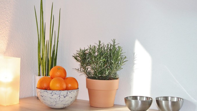 Haus - Wohnzimmer dekorieren Beton Deko für Drinnen - Anleitungen und Anregungen für Beton-Deko im Innenbereich